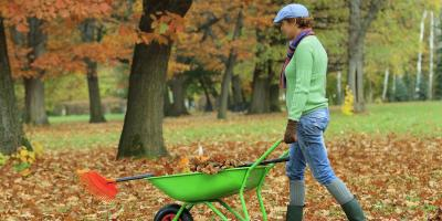 Working in Your Yard? Consider These 5 Tips to Prevent Neck and Back Pain , Mountain Home, Arkansas