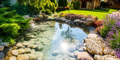3 Reasons to Install a Decorative Pond on Your Property, Saratoga, Wisconsin