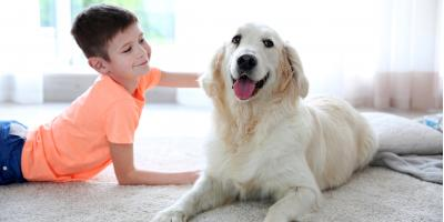 3 Reasons to Have Your New Carpet Professionally Cleaned, Southeast Guadalupe, Texas