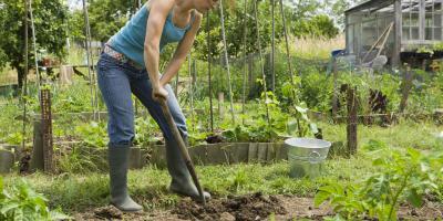 3 Types of Garden Tools Every Gardener Needs, Arden Hills, Minnesota