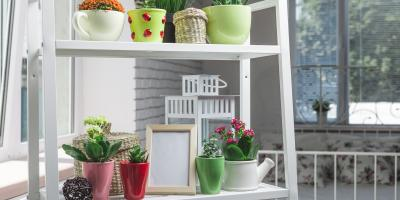 Do's & Don'ts of Caring for House Plants, Manhattan, New York