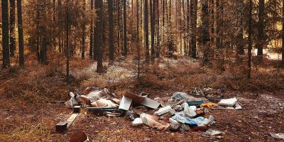 3 Devastating Consequences of Improper Waste Disposal, Brooklyn, New York