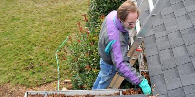 3 Ways to Keep Pests out of Your Gutters, Franklin, Ohio