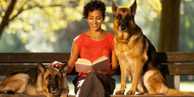 What Information Should You Leave for the Dog Sitter?, Churchville, New York