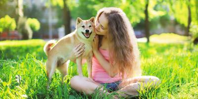 5 Flea & Tick Precautions to Keep Your Pet Safe, Nicholasville, Kentucky