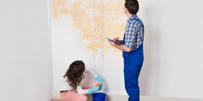 3 Reasons for Professional Water Damage Restoration, Gastonia, North Carolina