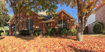 5 Ways to Maintain Your Sod Lawn This Fall, Hill, Arkansas