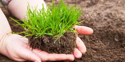 5 Spring Lawn Care Tips for a Lush, Green Yard, North Ridgeville, Ohio