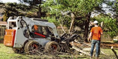 4 FAQ About Tree Removal Service, North Royalton, Ohio