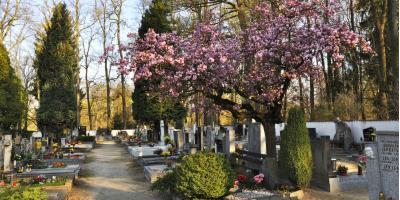 4 FAQsAbout Burial Vaults to Help You Plan Funeral Arrangements, Morehead, Kentucky