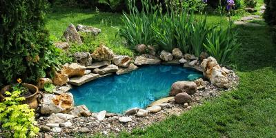 3 Easy Steps for Winterizing Your Backyard Pond, Sagamore Hills, Ohio