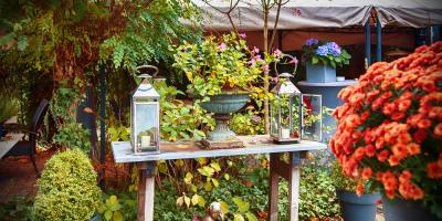 Top 3 Plants & Flowers to Add to Your Autumn Landscape, Colerain, Ohio