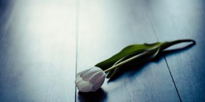 3 Reasons to Choose Cremation Services for a Deceased Loved One, Rochester, New York