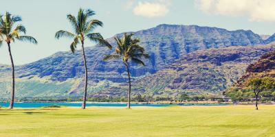 4 Benefits of Aerating Your Grass, Wahiawa, Hawaii