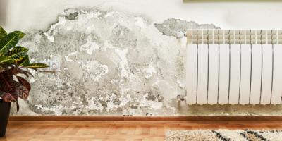 How Does a Restoration Service Handle Water Damage?, Honolulu, Hawaii