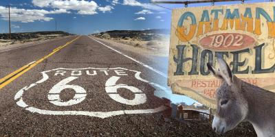 What You Need to Know About Visiting Oatman, AZ, Laughlin, Nevada