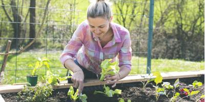 Best Ohio Plant Varieties to Grow This Spring , Fairfield, Ohio