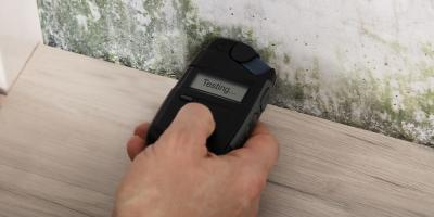 Why You Should Schedule Your Mold Testing Before Spring, Anderson, Ohio