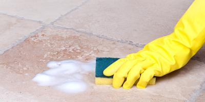 4 Common Types of Household Mold, Oneonta, New York