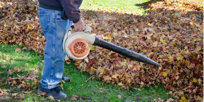 3 Important Fall Yard Care Tips, Dothan, Alabama