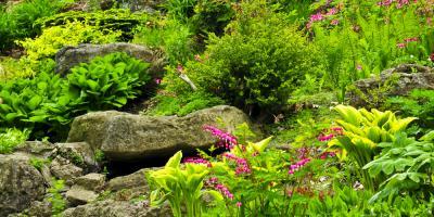3 Shrubs to Consider for Your Alaska Garden, Anchorage, Alaska