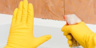 3 Common Causes of Household Mold, Pagosa Springs, Colorado