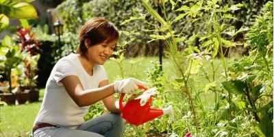 5 Reasons to Start a Garden, Altadena, California