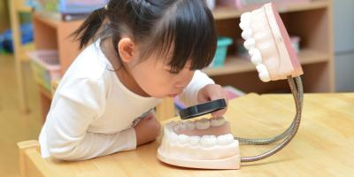 What Pediatric Dentists Want You to Know About Baby Teeth, Campbell, Wisconsin