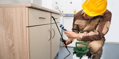 What to Look for in a Pest Control Company, Henderson, Illinois