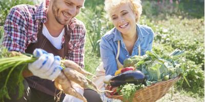 How to Protect Your Vegetable Garden From Pests, Columbus, North Carolina