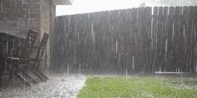 How to Manage Pests During the Rainy Season, Koolaupoko, Hawaii