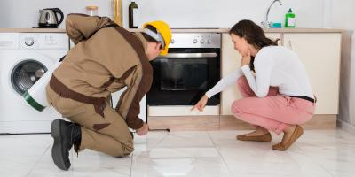 Why You Need to Keep Rats & Mice Out of Your Home, Port Orchard, Washington