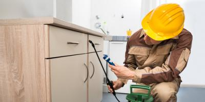 Bug Busters Helps You Decide When You Need Pest Control Services, Naugatuck, Connecticut