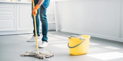 How to Keep a Clean, Bug-Free Home, Hebron, Kentucky
