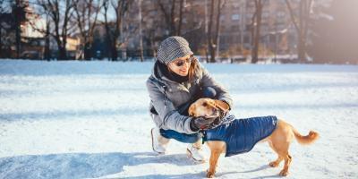 Do Dogs Need Winter Clothing?, Columbus, Nebraska