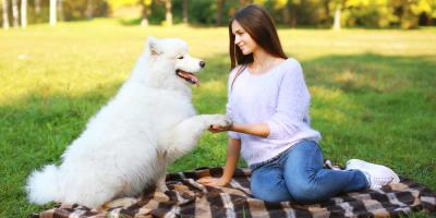 3 Pet Care Tips to Help Your Dog Relax During Nail Trimming , Elizabethtown, Kentucky