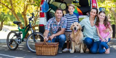 3 Road Trip Tips for Traveling With Pets, Sharonville, Ohio