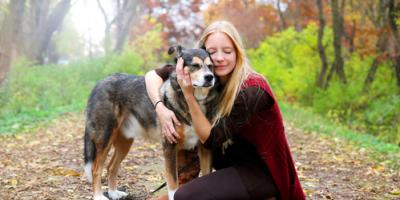 3 Veterinarian-Recommended Tips for Caring for Aging Pets, Amsterdam, Virginia