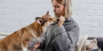 What Pet Owners Need to Know for Heartworm Awareness Month, Honolulu, Hawaii
