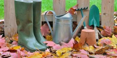 Denver Pharmacy Shares 3 Tips for Fighting Fall Allergies, East Cocalico, Pennsylvania