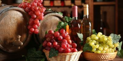 Spots to Visit for a Hudson Valley Wine Tour, Mamakating, New York