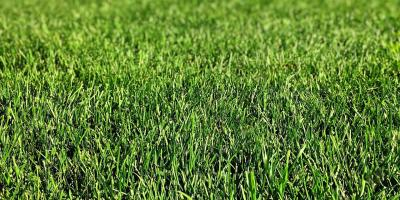 Prep Your Yard for Spring With Pittsburgh Lawn Service Specialists, Sewickley, Pennsylvania