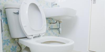 5 Items You Should Never Put Into the Toilet, Warrensville Heights, Ohio