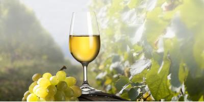 Try These 5 Types of White Wine, La Crosse, Wisconsin