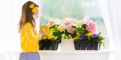 Top 5 Low-Maintenance Garden Plants for Beginners, Port Jervis, New York