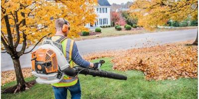 Can Fall Leaves Damage Your Lawn?, Englewood, Ohio