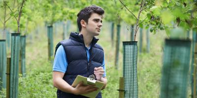 The Top 3 Benefits of Commercial Tree Care Services, Center City, Minnesota