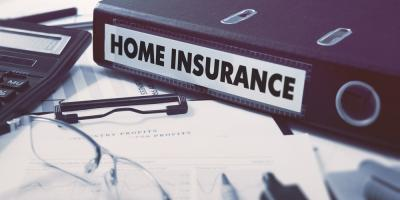 When Is Professional Mold Removal Covered by Insurance?, Shenandoah, West Virginia