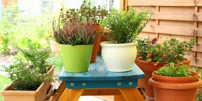 A Greenhouse's Top 5 Tips for Fall & Winter Container Gardening, Quaker City, Ohio