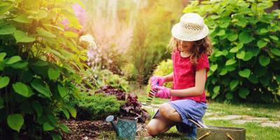5 Essential Summer Garden Supplies, Ragland, Alabama